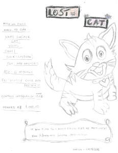 lost-cat-2