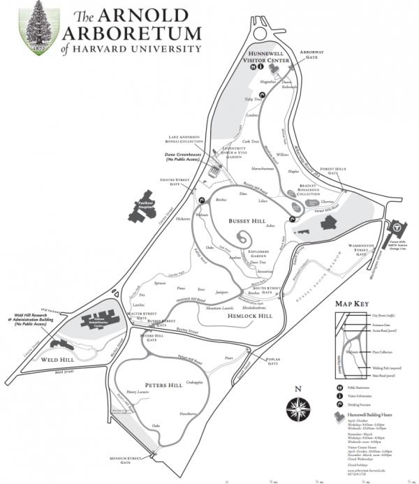 arnold arboretum - harvard map