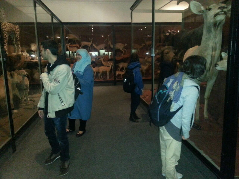 EC Cape Town students at the Cape Town Museum 2014