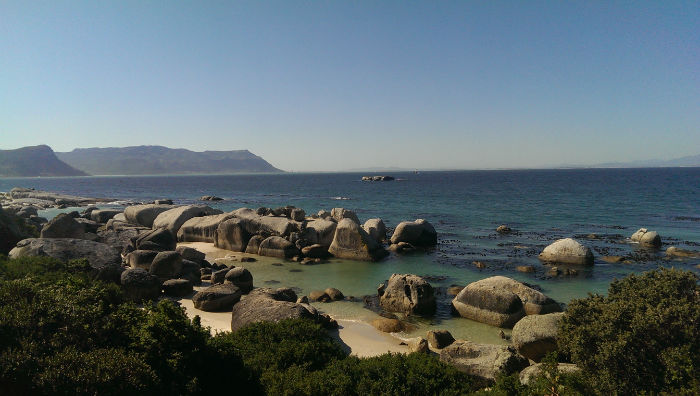 Boulders beach is a popular site to see seals and EC Cape Town students love going there.