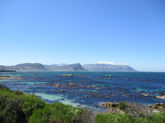 The beach is always welcome  on these hot days and popular with EC Cape Town students