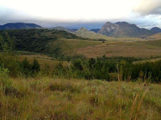 The beautiful Silvermine Nature Reserve in Cape Town
