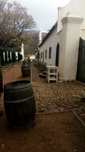 The wine tour is a popular activity at EC Cape Town