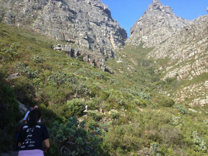 The great outdoors is an attractive option for EC Cape Town students