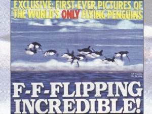 Flying Penguins!