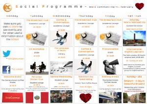 social programme - Feb 11th