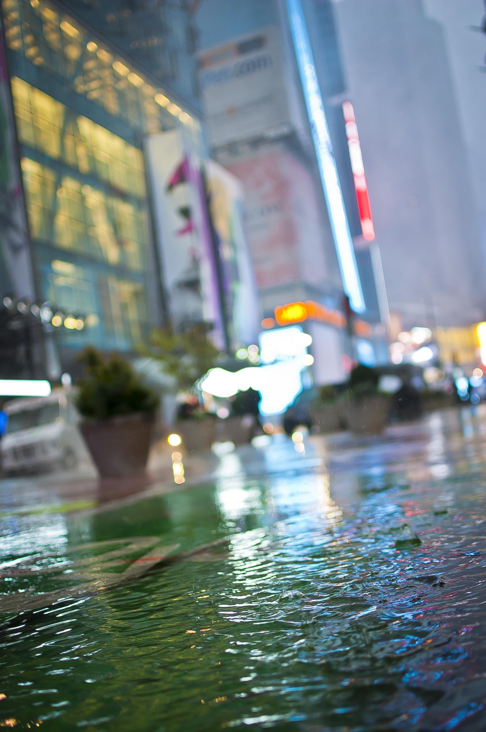 Broadway Sewer Snow_2