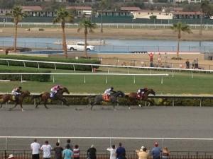 horse race blog