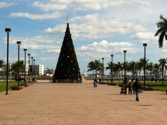 Christmas in Miami - EC Miami Blog
