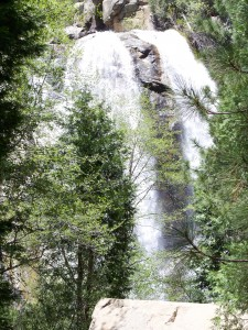 Cascade Creek Falls, Yosemite National Park (photo by Patricia A Leslie, artist / author)