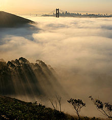 A marine layer creates fog!