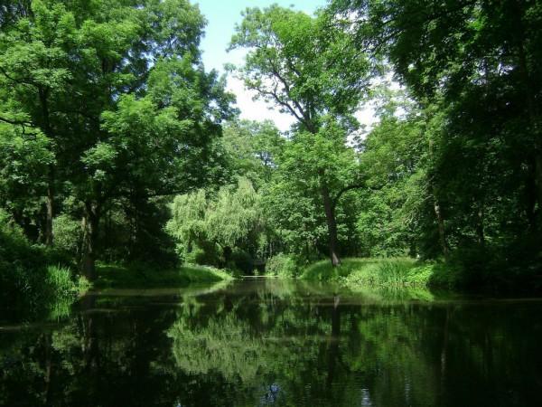 Toronto's Best Parks
