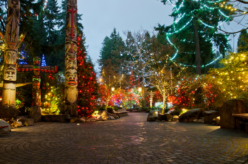 capilanosuspensionchristmaslight-w800-h600