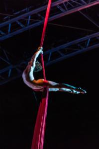 circus-w300-h300