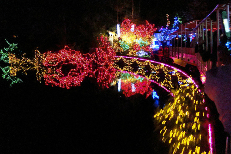 stanley-park-christmas-lights-w800-h600