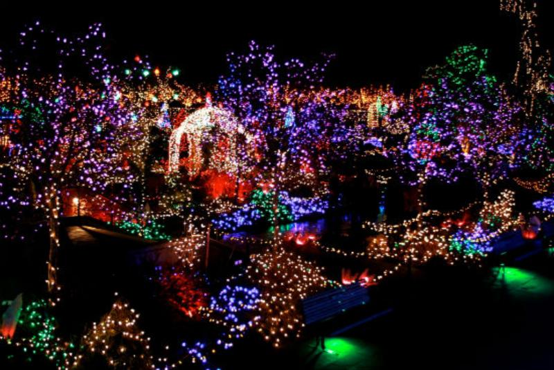 Festival of lights at vandusen botanical garden for Botanical garden christmas lights