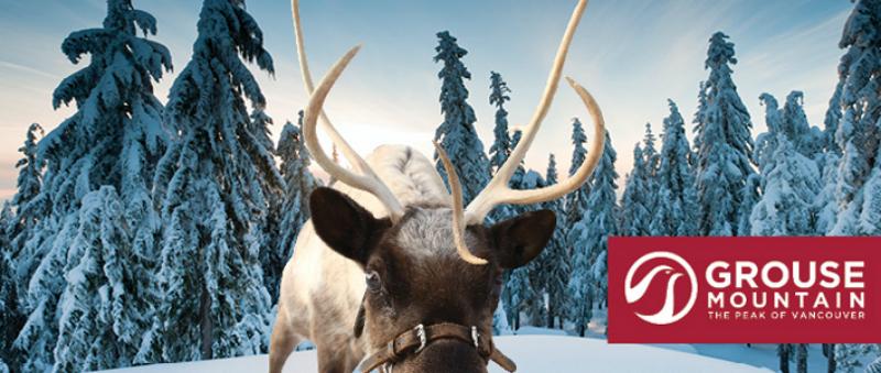 peakofchristmas-w800-h600