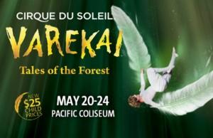 cirque-du-soleil-varekai-banner-w600-h400
