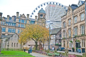 Study English in Manchester