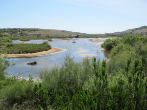 Ghadira-Nature-Reserve