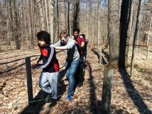 Lodge woods
