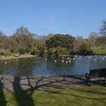 Queens Park Pond EC Brighton