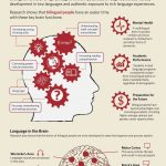 Bilingual Brain EC Brighton