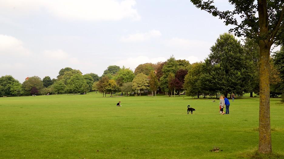 Preston Park EC Brighton
