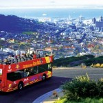 The red bus is the best way to see all of Cape Town