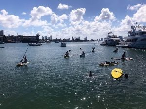 Kayaking with our students at EC English Center in Miami