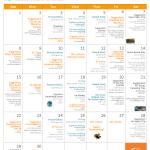 Activity Calendar November