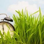 This weekend, Daylight Savings Time starts!