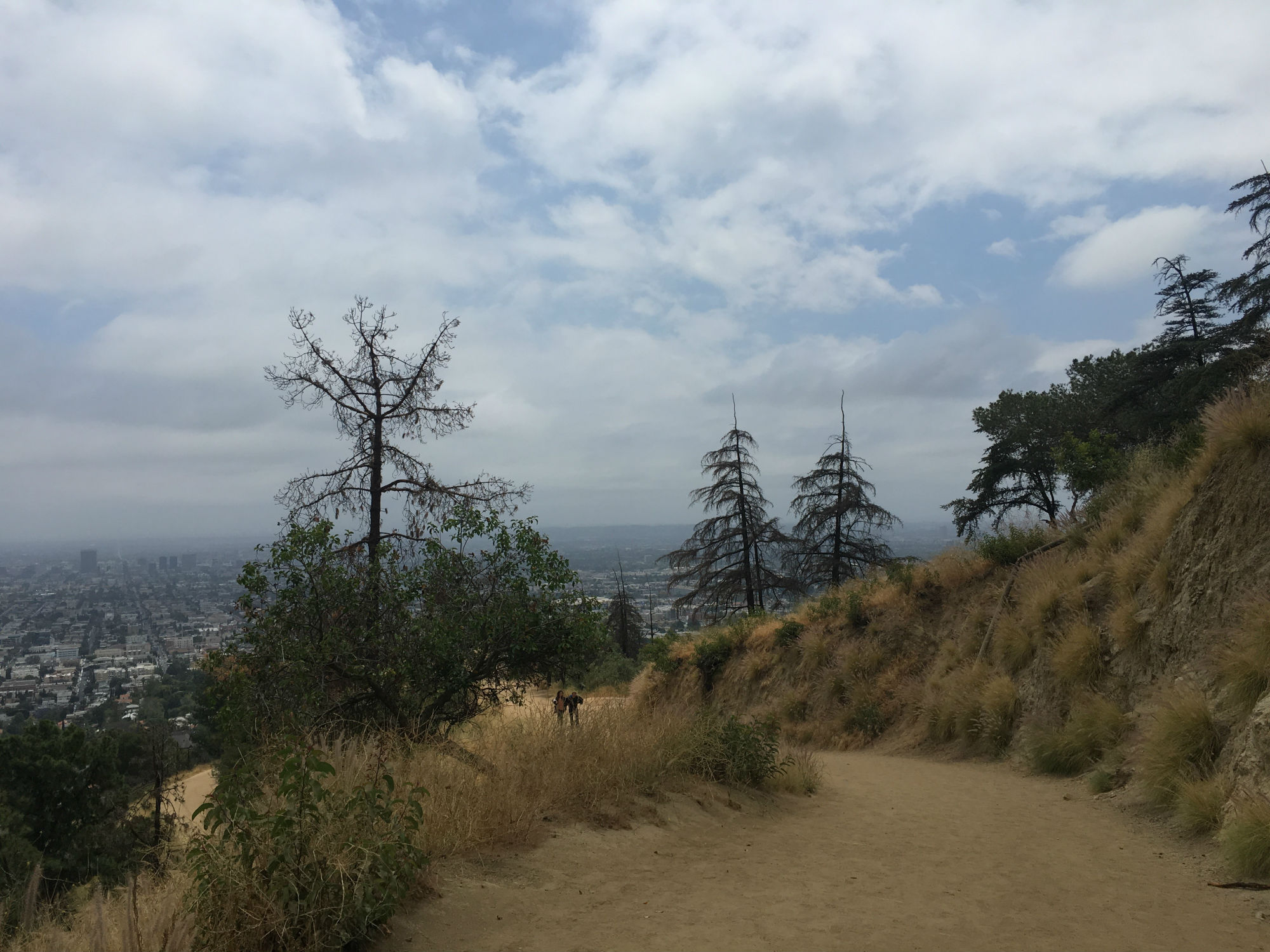 There are many hiking opportunities in LA.