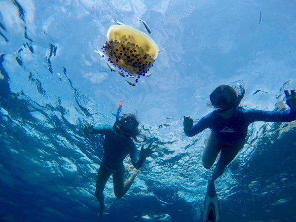 Studenti di Inglese che nuotano a Malta