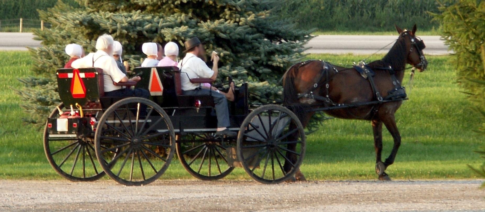 Amish_people