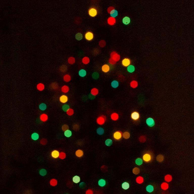Christmas Trees Melbourne: EC English Melbourne Australia Celebrates Christmas